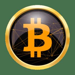 btc-logo-bitcoin