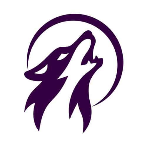 lonerwolf-spiritual-courses-logo-square